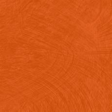 omnisport esquisse dark orange