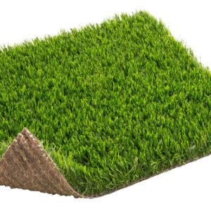 cesped-mentha-turgrass