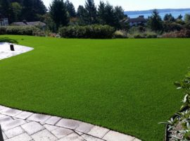 tussing_steilcom_lawn4-synthetic-turf-northwest